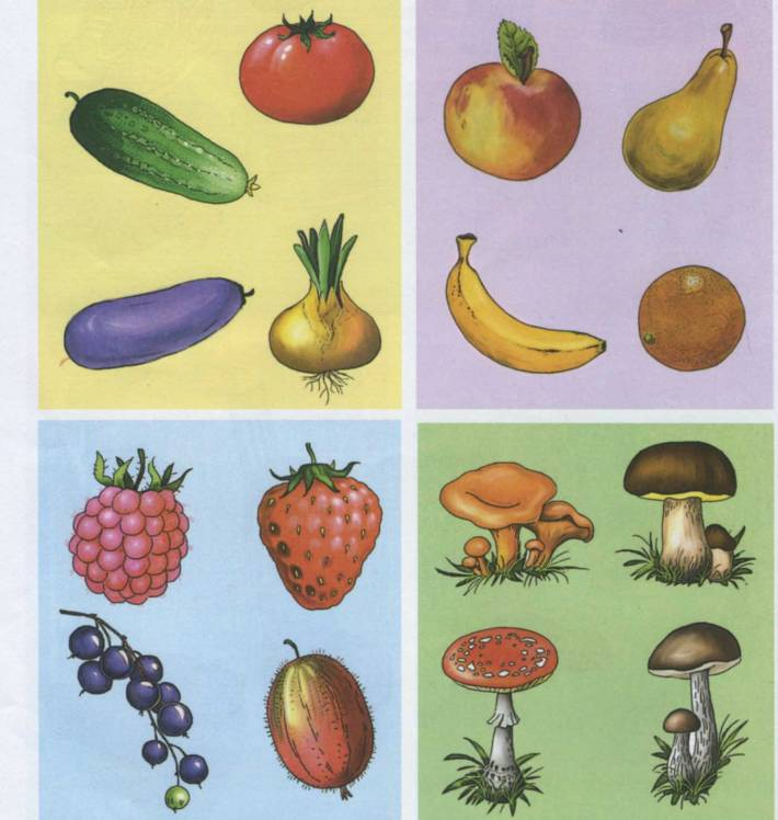рамках картинки на обобщающие понятия овощи еще кольца